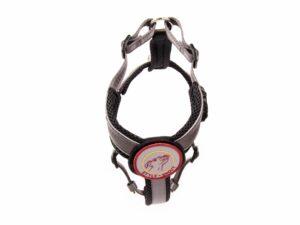 BG-Silber-verstellbar-1