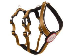 Sicherheitsgeschirr – Patch&Safe – Gold-Black, L