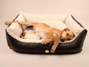 Hundebett Sleep'n'Style – Größe M